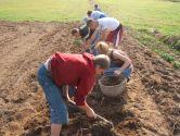 Wycieczka dla Domu Dziecka - wizyta w ogrodzie botanicznym i gospodarstwie agroturystcznym